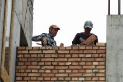 budowa6004