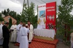procesja_2012_026